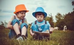 Twee jongens lezen een boek
